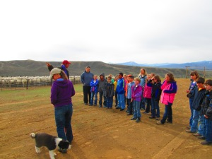 Cliff tells students about his shearing crew