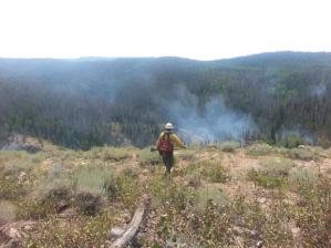 Firefighter heading toward fire USFS photo by Kassidy Kern