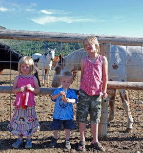 Maeve, Tiarnan and Siobhan checking out the horses