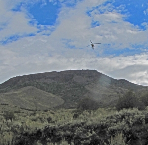 Seismograhic helicopter flying over Battle Mountain during deer hunting season. They hope to drill next year.