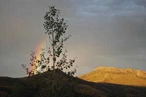 rainbow over Sheep Mountain