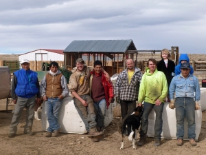 The Hoopes Shearing Crew and the Ladder Ranch Crew