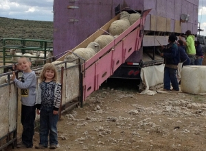 We also like child labor--Seamus and Maeve work the chute.