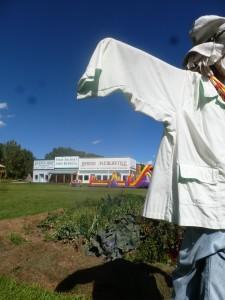 Museum scarecrow