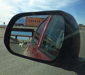 crossing under I80, in the rear view mirror