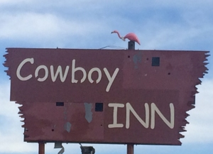 The rare Greater Sage Flamingo was spotted nesting at the Cowboy Inn in Baggs, Wyoming.